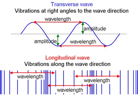 labelled diagram of a transverse wave image gallery longitude and transverse waves