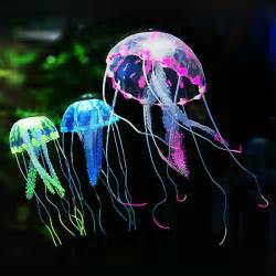 online buy wholesale box jellyfish from china box