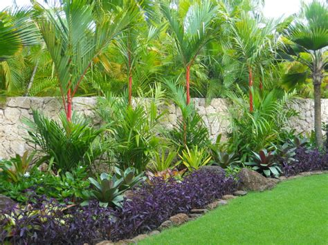 Tropical Landscaping Ideas Tropical Landscape