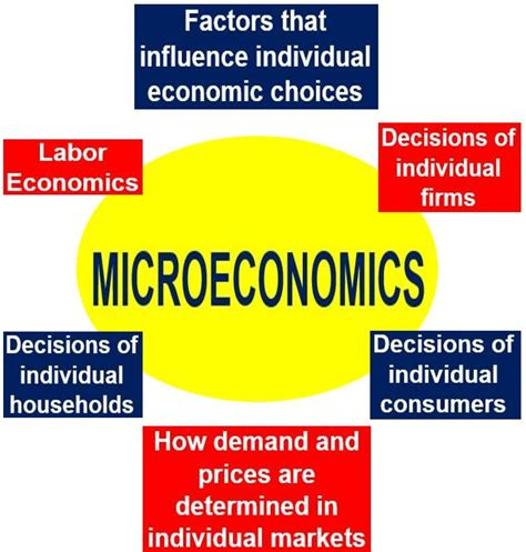 expert failure cambridge studies in economics choice and society books the microeconomics market failures