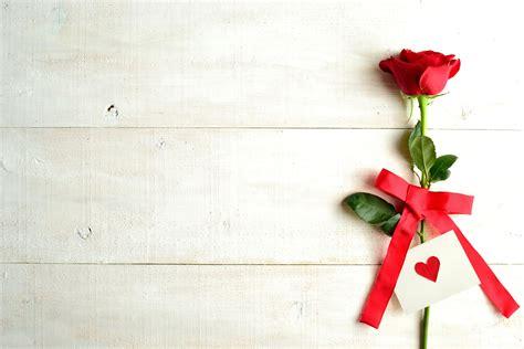 san valentin wallpaper consejos para novatos decoraci 243 n san valent 237 n