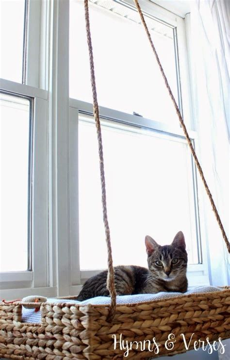 window perch 1000 ideas about cat window perch on cat window cat play tower and cat