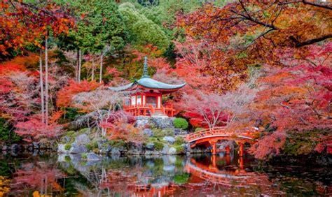 imagenes korea japon 191 por qu 233 el oto 241 o es amarillo en europa y rojo en