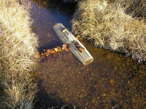 diy fish trap fish traps