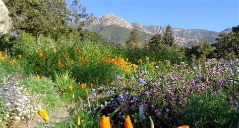 Sb Botanic Garden Santa Barbara Botanic Garden S Home Pinterest