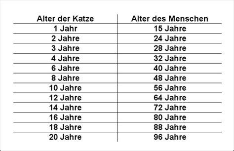 katzenjahre in menschenjahre tabelle kratzbaum do it yourself combine it yourself pirate