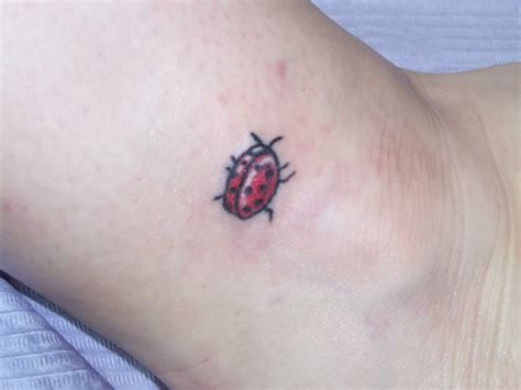pictures of tattoos designs ladybug tattoos designs ideas and meaning tattoos for you