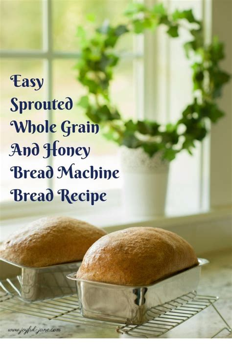 Brown And Pink Janes From Bread And Honey by 25 Best Ideas About Sprouted Whole Grain Bread On