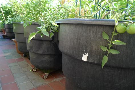 Inexpensive Outdoor Planters by Pin By Susan Le Fey á 167 â 167 á On Garden Magic á ú ú û á