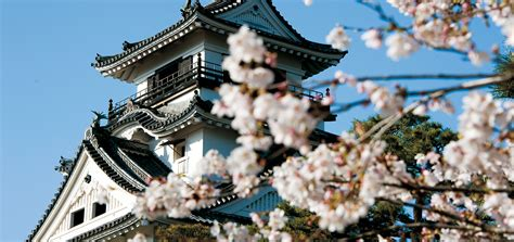 Do They A Cruise For Spirtual Retart Detox by Kochi Castle History Things To Do Visit Kochi Japan