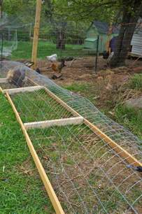 Easy Backyard Chicken Coop Plans How To Build A Diy Backyard Chicken Tunnel