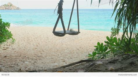 swings on the beach a rope swings on the beach stock video footage 9018578
