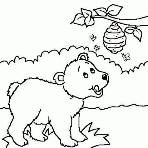 honey bear coloring pages a drawing of a bear and honey animals coloring to print