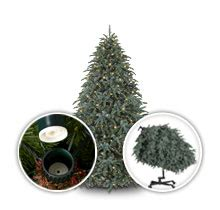 setting upchristms tree easy setup artificial trees balsam hill