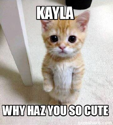 So Cute Meme - meme creator kayla why haz you so cute meme generator at