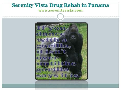 Serenity Recovery Detox by Sobriety And Recovery Slogans From Rehab In Panama