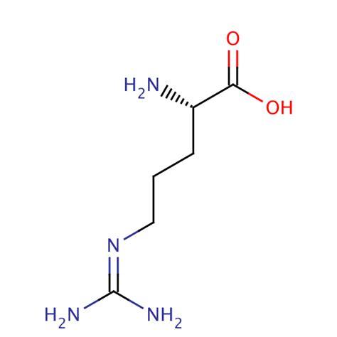 Arginine Supplementation For Endurance and Intensity ... L Arginine Structure