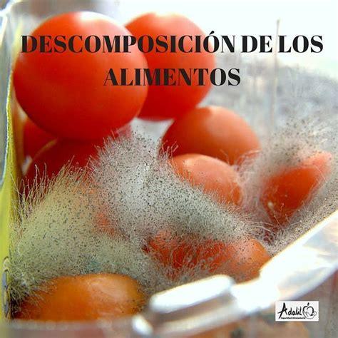 descomposicion de los alimentos adalil seguridad alimentaria