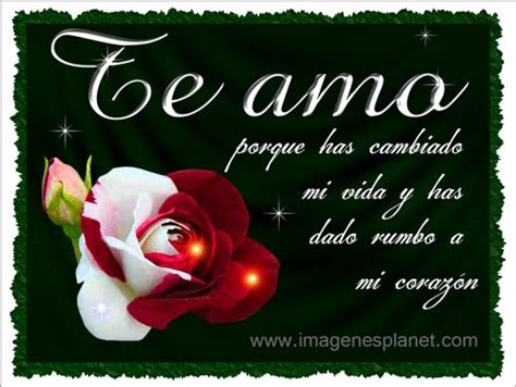 imagenes romanticas rosas 96 best images about tarjetas para toda ocasi 243 n on