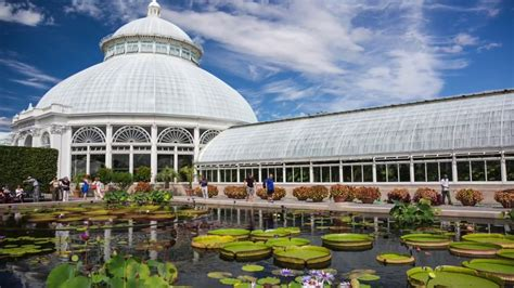 5 Free Things To Do In New York Iol Travel Bronx Botanic Gardens