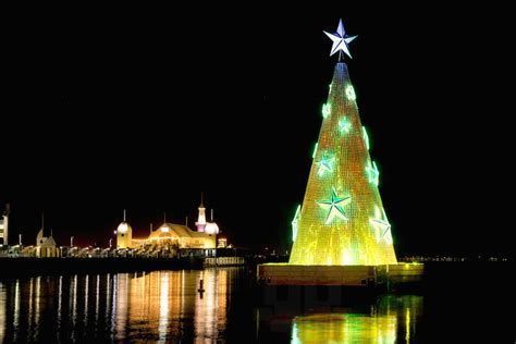 geelong floating christmas tree illuminates corio bay in