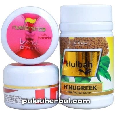 Obat Herbal Pembesar Payudara obat pembesar payudara next booster obat pembesar payudara jual beli obat herbal
