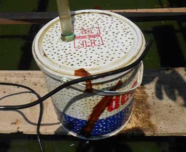 cara membuat filter air dengan ember membuat alternatif saringan pompa kolam dengan ember bekas