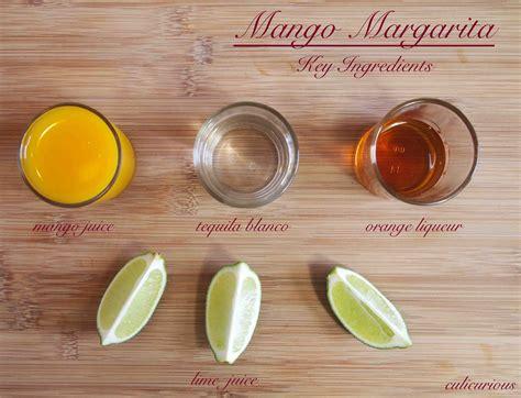 mango rocks mango recipe on the rocks culicurious
