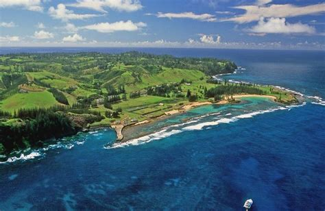Pine Valley Apartments   Norfolk Island Accommodation
