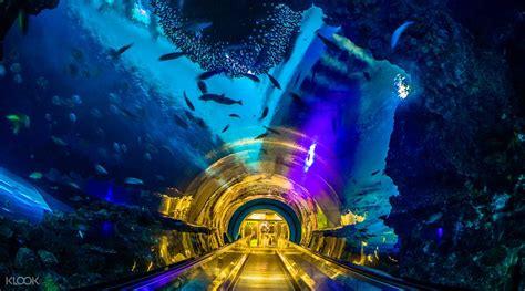 Tempat Lu Akuarium set tiket keluarga museum nasional keluarga biologi laut