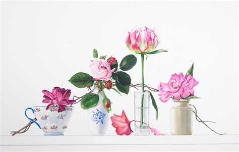 getting to know botanical artist billy showell jackson s art blog