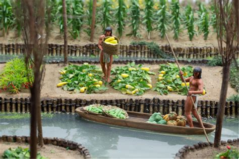 Aztec Floating Gardens by Te Papa S Aztecs Gardens In The Lake