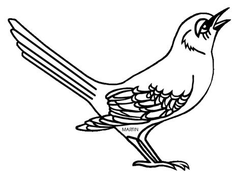 mockingbird coloring pages state bird clipart 42