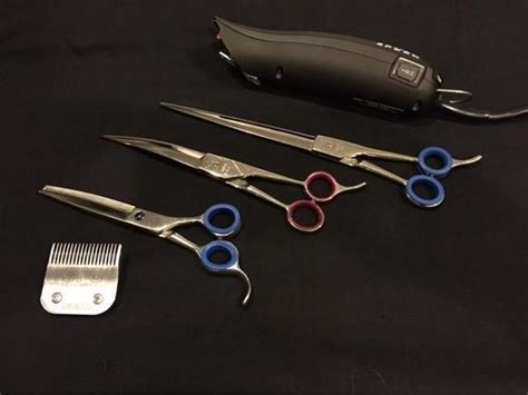 Hair Dryer Repair Ottawa scissor sharpening clipper blades sharpening clipper repair dryer repair saanich