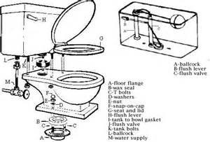 Bidet Electric Toilet And Bidet Installation And Repair