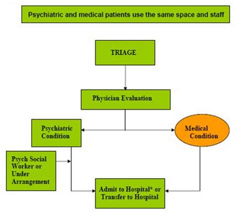 A Literature Review Psychiatric Boarding department of health emergency services autos post