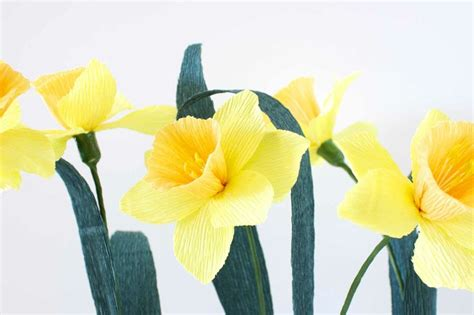 Paper Daffodils - 17 best images about papel crepe flores on