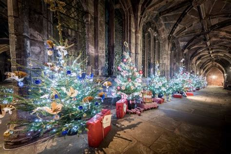 where can i buy a real christmas tree near me where can i buy a real tree in chester and ellesmere port chester chronicle