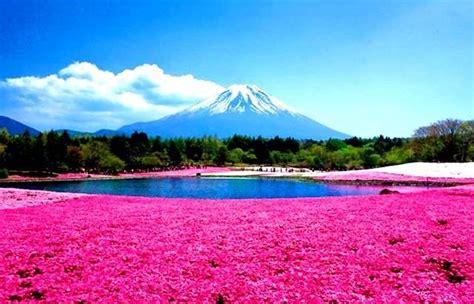 imagenes de paisajes muy hermosos im 225 genes de paisajes hermosos im 225 genes