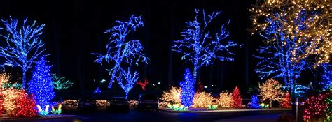 hire someone to hang christmas lights gurnee il