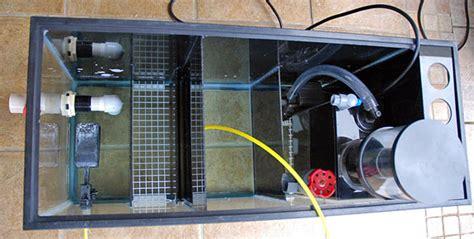 membuat sump filter aquarium build aquarium sump filter 1000 aquarium ideas