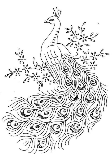 peacock birds coloring pages