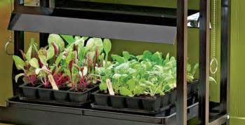 gardening under grow lights gardener s supply