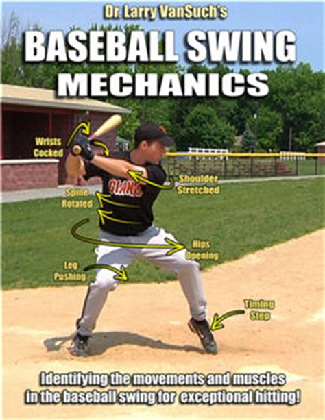 correct way to swing a bat baseball swing mechanics