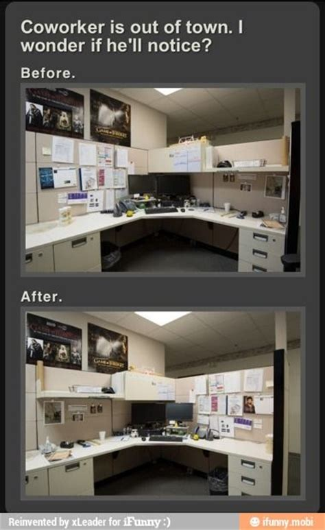 Cubicle Meme - cubicles lol and fun on pinterest