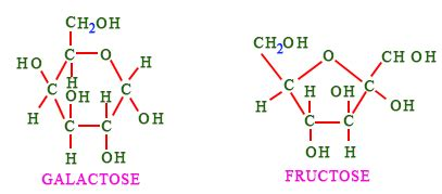 carbohydrates ring structure fructose ring structure www pixshark images