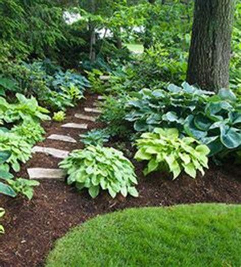 Patio Zone The Falls 1000 Ideas About Hosta Gardens On Hosta