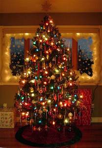 big colored lights lights on the tree pictures photos and images