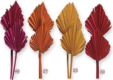 trockenblumen deko palmspeer trockenblumen zum basteln kr 228 nzen