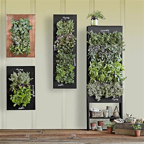 How To Make Wall Planters by Chalkboard Wall Planters For Vertical Garden Designs